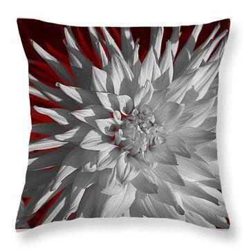 White Dahlia Throw Pillow by Richard Farrington