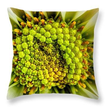 White Daisy Center Throw Pillow by Madonna Martin