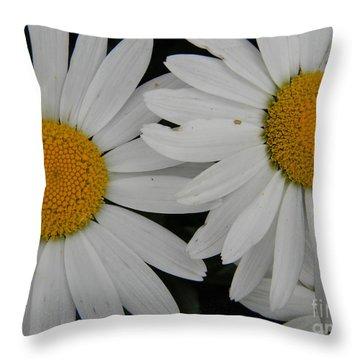 White Daisy In Full Bloom Throw Pillow