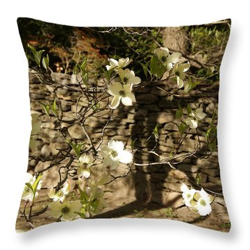 White Dogwood At The Stone Wall Throw Pillow