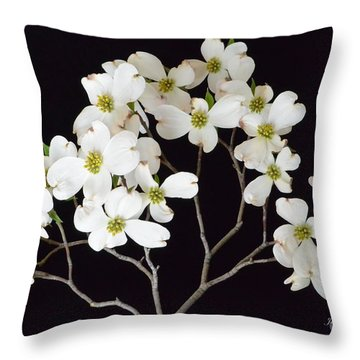 Throw Pillow featuring the photograph White Dogwood Branch by Jeannie Rhode