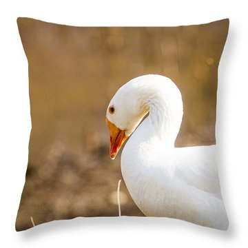 Throw Pillow featuring the photograph White Duck by Eleanor Abramson