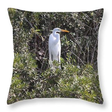 Throw Pillow featuring the photograph White Egret In The Swamp by Christiane Schulze Art And Photography