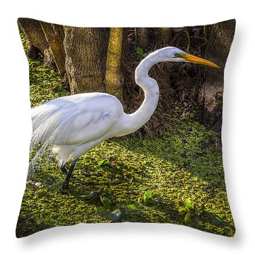 White Egret On The Hunt Throw Pillow by Marvin Spates