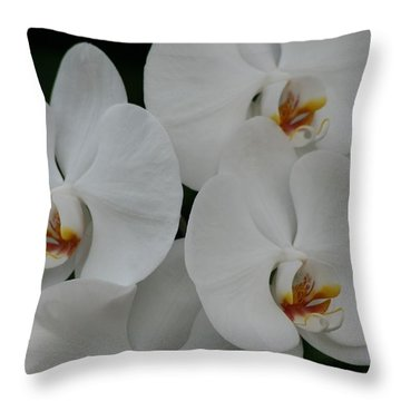 Throw Pillow featuring the photograph White Elegance by Mary Lou Chmura