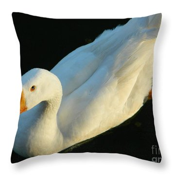 Throw Pillow featuring the photograph White Embden Goose  by Emmy Marie Vickers