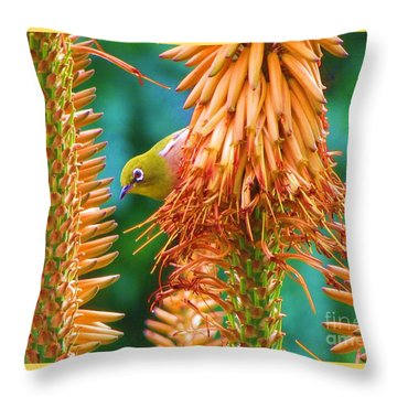 White-eye On Deer-horn Throw Pillow by Michele Penner