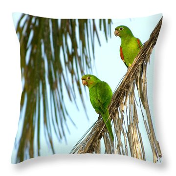 White-eyed Parakeets, Brazil Throw Pillow by Gregory G. Dimijian, M.D.