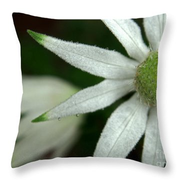 White Flannel Flowers Throw Pillow by Kaleidoscopik Photography