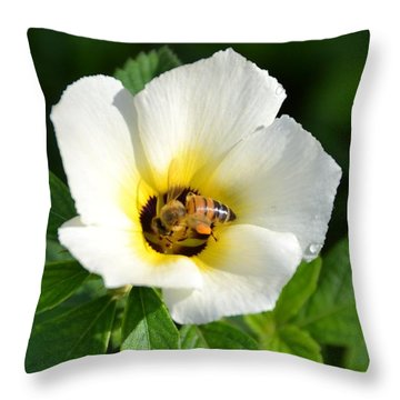 Throw Pillow featuring the photograph White Flower- Nectar by Darla Wood