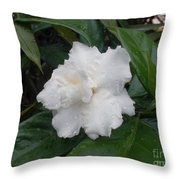 White Flower Throw Pillow by Sergey Lukashin