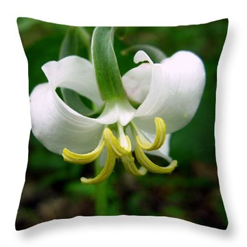 White Flowering Rose Trillium Throw Pillow by William Tanneberger