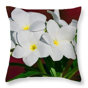 White Frangipani Throw Pillow