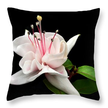 White Fuchsia. Throw Pillow