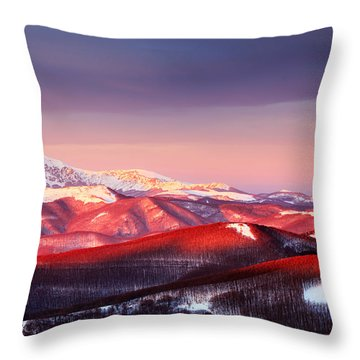 White Heart Throw Pillow by Evgeni Dinev