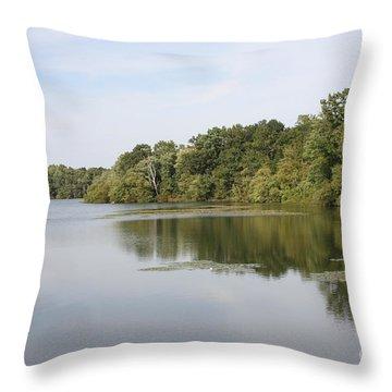 White Heron Lake Poconos Pa II Throw Pillow by John Telfer