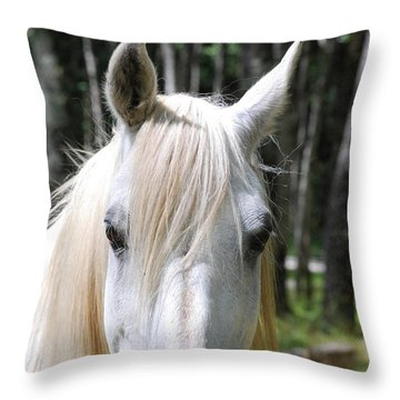 Throw Pillow featuring the photograph White Horse Close Up by Jocelyn Friis