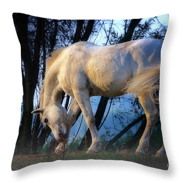 Throw Pillow featuring the photograph White Horse In The Early Evening Mist by Nick  Biemans