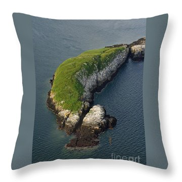 White Horse Island Throw Pillow