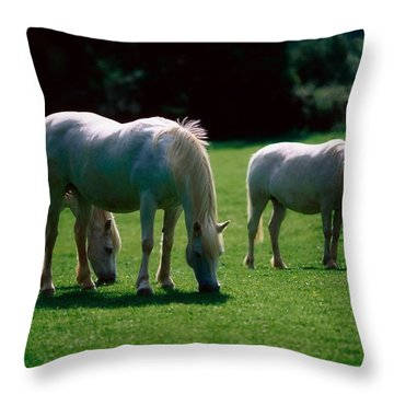 White Horses, Ireland Throw Pillow by The Irish Image Collection