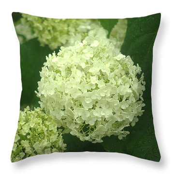 Throw Pillow featuring the photograph White Hydrangea Blossoms by Suzanne Powers
