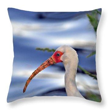 Intriguing Ibis Throw Pillow