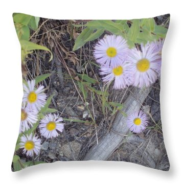Throw Pillow featuring the photograph White In The Wild by Fortunate Findings Shirley Dickerson