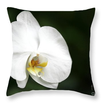 White Light Throw Pillow by Sabrina L Ryan