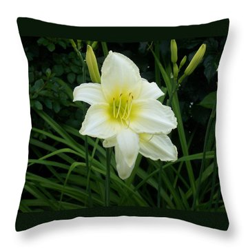 White Lily Throw Pillow by Catherine Gagne