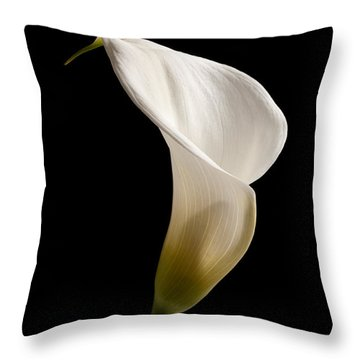 White Lily Throw Pillow by Amanda Elwell