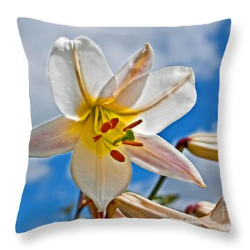 White Lily Flower Against Blue Sky Art Prints Throw Pillow