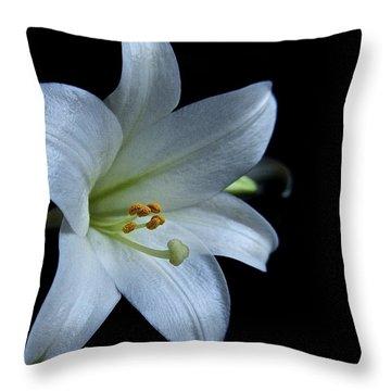 White Lily On Black Throw Pillow by Lori Miller