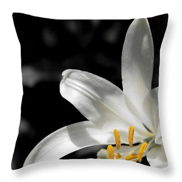 White Lily With Yellow Stamens Against Dark Background Throw Pillow