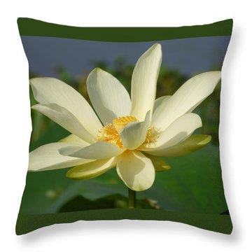 White Lotus Blossom Throw Pillow
