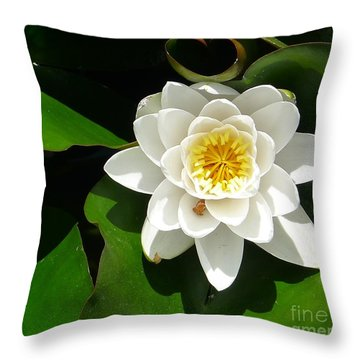 White Lotus Heart Leaf  Throw Pillow