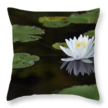 Throw Pillow featuring the photograph White Lotus Lily Flower And Lily Pad by Glenn Gordon