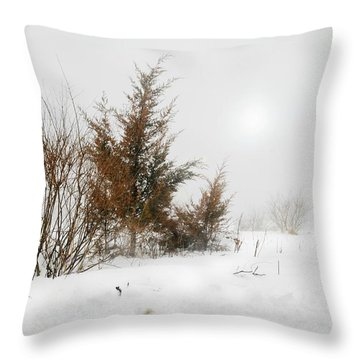 White Magic Throw Pillow by Diana Angstadt