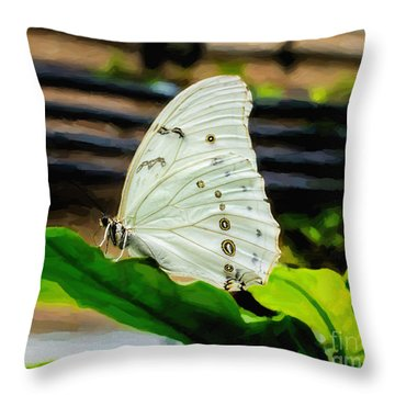 White Morpho Throw Pillow by Jon Burch Photography