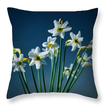 White Narcissus On A Dark Blue Background Throw Pillow