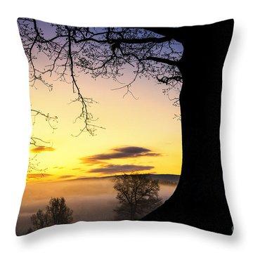 White Oak At Sunrise Throw Pillow by Thomas R Fletcher