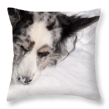 White On White Throw Pillow by Cathy Donohoue