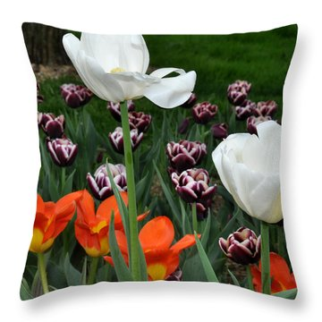 White Orange And Purple Tulips Throw Pillow by Diane Lent
