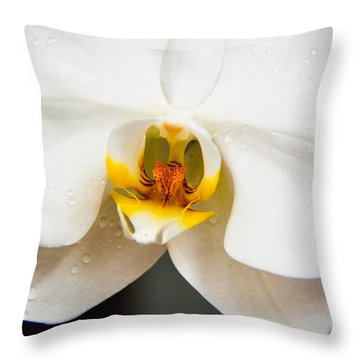White Orchid Throw Pillow by Lisa L Silva