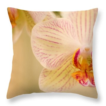 Throw Pillow featuring the photograph White Orchids by Chris Scroggins