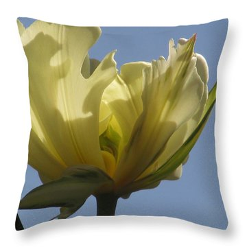 White Parrot Tulip Throw Pillow by Alfred Ng