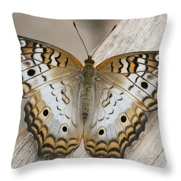 White Peacock Butterfly Throw Pillow by Judy Whitton