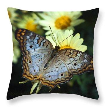 White Peacock Butterfly On A Daisy Throw Pillow by Saija  Lehtonen