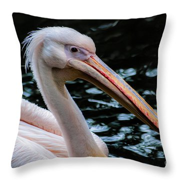 White Pelican Throw Pillow by Hannes Cmarits