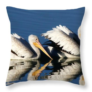 White Pelican Pair Throw Pillow