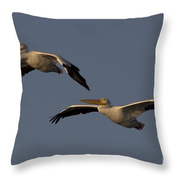 Throw Pillow featuring the photograph White Pelican Photograph by Meg Rousher